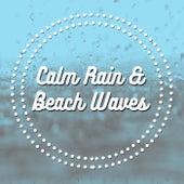 Calm Rain & Beach Waves by Various Artists
