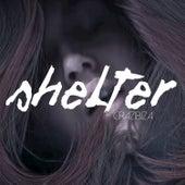 Shelter by Crazibiza