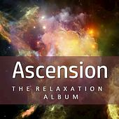Ascention: The Relaxation Album by Various Artists