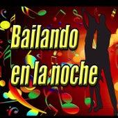 Bailando en la Noche by Various Artists