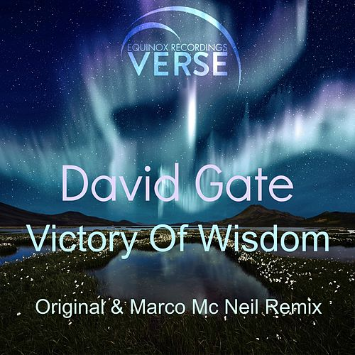 Victory Of Wisdom by David Gate