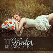 Top Winter Relaxing Music: 70 Minutes Wood, Water, Wind and Piano Atmospheres by Various Artists