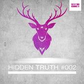 Hidden Truth #002 by Various Artists