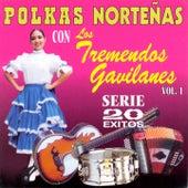 Polkas Norteñas, Vol. 1:  20 Éxitos by Los Tremendos Gavilanes