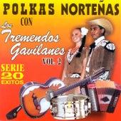Polkas Norteñas: 20 Éxitos, Vol. 2 by Los Tremendos Gavilanes