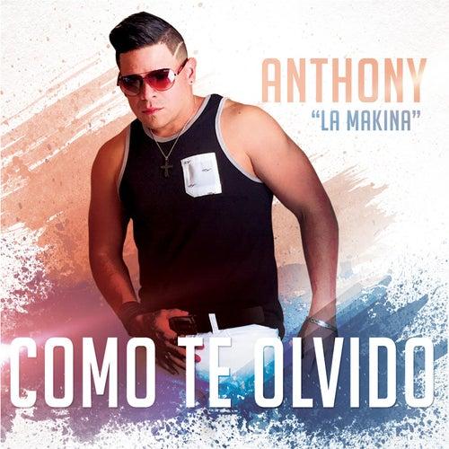 Como Te Olvido by Anthony Santos