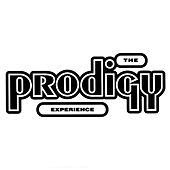 Experience by The Prodigy