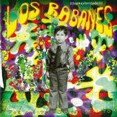 ¿Por Qué Te Fuiste Benito? by Los Rabanes