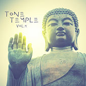 Tone Temple, Vol. 1 by Various Artists