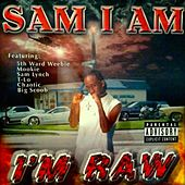 I'm Raw by Samiam