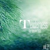Tenderness, Vol. 14 by Various Artists