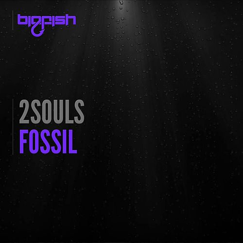 Fossil by 2 Souls