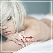 Serenity - Sexy Lounge & Chill out Pearls, Vol. 5 by Various Artists