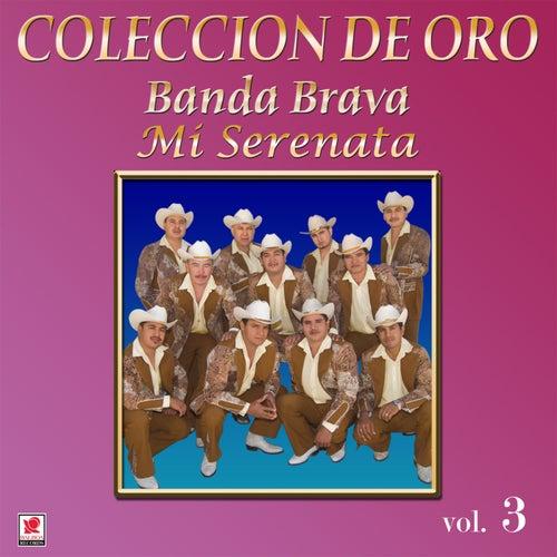 Colección de Oro, Vol. 3: Mi Serenata by Banda Brava