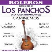 México los Panchos by Trío Los Panchos