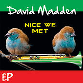 Nice We Met by David Madden