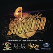 Arriba Sinaloa - Las Mejores Voces de Banda Sinaloense by Various Artists