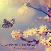 Autogenes Training Entspannungsmusik - Stress Abbauen mit Meditationsmusik zum Entspannen by Meister der Entspannung und Meditation
