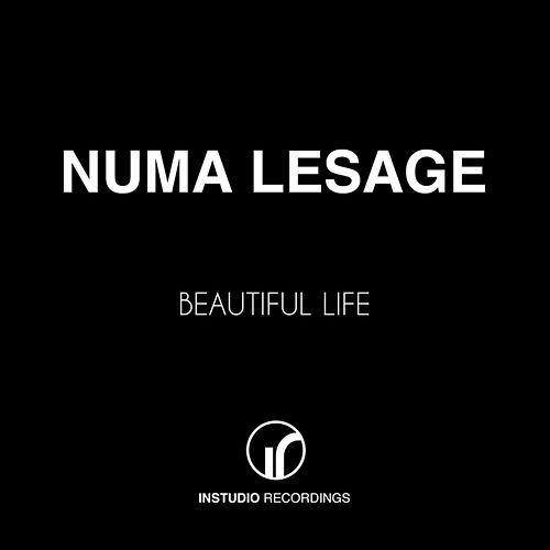 Beautiful Life by Numa Lesage