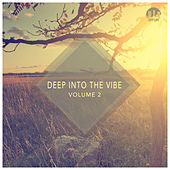 Deep Into the Vibe, Vol. 2 by Various Artists