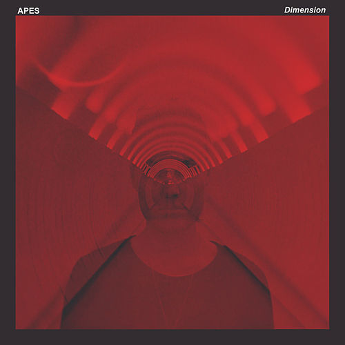 Dimension by Apes