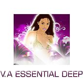 Essential Deep by Various Artists