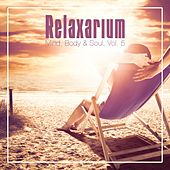 Relaxarium - Mind, Body & Soul, Vol. 5 by Various Artists