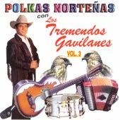 Polkas Norteñas, Vol. 3: 20 Éxitos by Los Tremendos Gavilanes