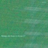 Little Break On Skylab EP by Smog