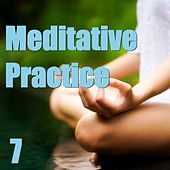 Meditative Practice, Vol. 7 by Various Artists