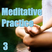 Meditative Practice, Vol. 3 by Various Artists