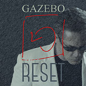 Reset by Gazebo