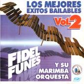 Los Mejores Exitos Bailables Vol. 2. Música de Guatemala para los Latinos by Fidel Funes Y Su Marimba Orquesta