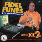 Mosaicon X L 2. Música de Guatemala para los Latinos by Fidel Funes Y Su Marimba Orquesta