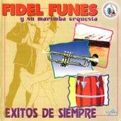 Exitos de Siempre. Música de Guatemala para los Latinos by Fidel Funes Y Su Marimba Orquesta