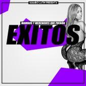 Mambos y Merengues Que Fueron Exitos by Various Artists