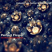 Perfect Flower (feat. Noel Neron) by Valentin van Corner