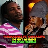 I'm Not Ashame (The River Nile Beat) by Turbulence