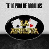 Te Lo Pido de Rodillas by La Apuesta