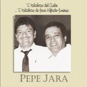 Palabras del Cielo, Palabras de Jose Alfredo Jimenez by Pepe Jara