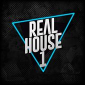 Real House 1 by Various Artists