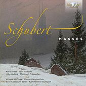 Schubert: Complete Masses by Various Artists