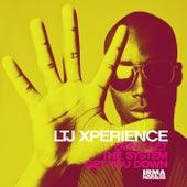 Don't Let the System Get You Down by L.T.J. X-Perience