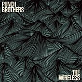 Sleek White Baby by Punch Brothers