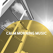Calm Morning Music by Various Artists