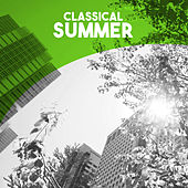 Classical: Summer by Various Artists