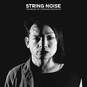 The Book of Strange Positions von String Noise