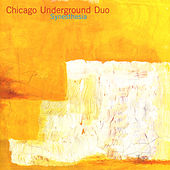 Synesthesia by Chicago Underground Duo