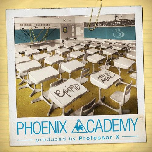 Phoenix Academy by Professor X