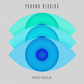 Into Focus EP by Panama Wedding